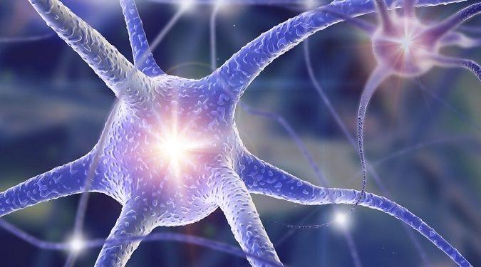 Détachement de Traumatismes® Hypnose PNL Coaching image neuronnes gros plan