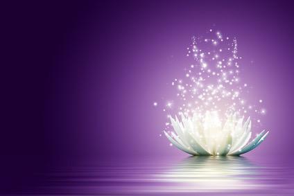 Détachement de Traumatismes® Hypnose PNL Coaching fleur lotus s'ouvrant avec lucioles